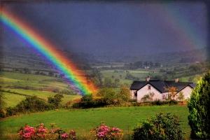 rainbow2bwp