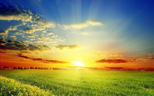 4464012-sunshine-wallpapers
